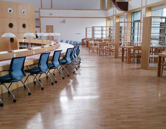 洁福塑胶地板 柏莱灵动  学校地板/幼儿园地板/图书馆地板