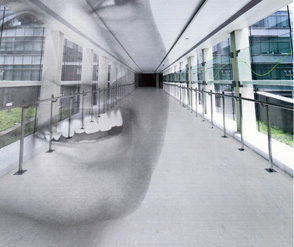 MIPOLAM 泰步  ® 洁福塑胶地板 洁福PVC地板